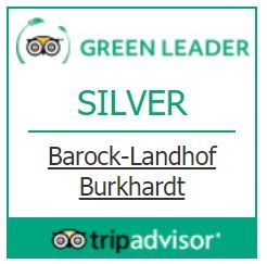 Green Leader Silver