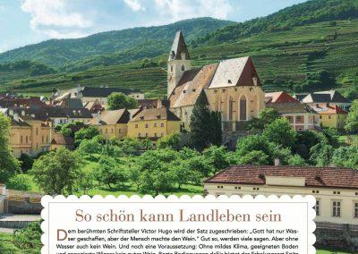 LandLeben 2013 (2)